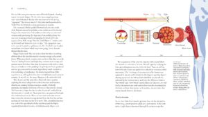 BiomechanicsOfMovement_Final_Spread_Samples_Page_23