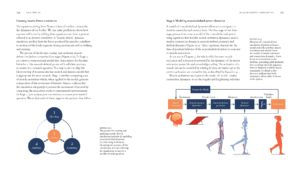 BiomechanicsOfMovement_Final_Spread_Samples_Page_34