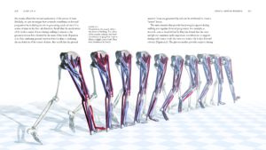 BiomechanicsOfMovement_Final_Spread_Samples_Page_38